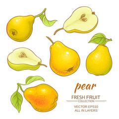 pear vector set