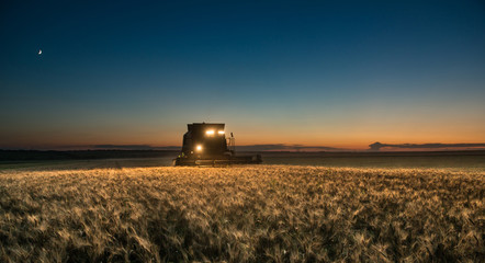 Combine harvester working on a wheat crop at night
