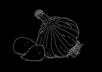 White garlic on black background