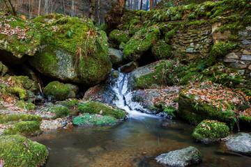 Winter creek in Austria