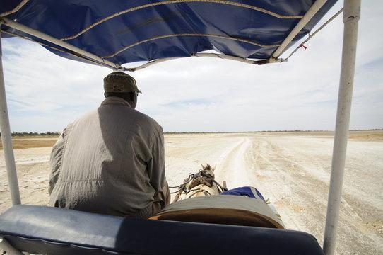 Horse and cart on track, Sine Saloum Delta, Senegal, West Africa