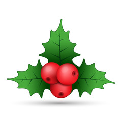 Christmas holly berries realistic sprig, vector. Simple mistletoe decorative red and green illustration.