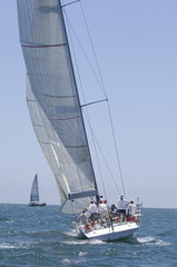 Crew on board yacht in competitive team sailing event