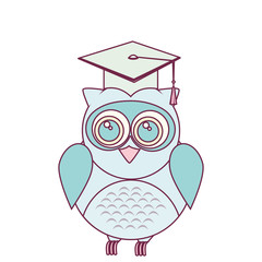 owl with hat graduation vector illustration design