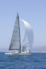 Sailboat racing in the blue and calm ocean against sky