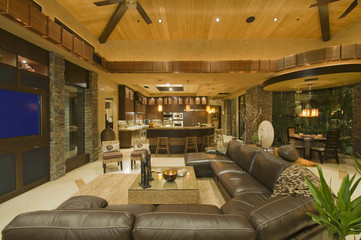 Interior of contemporary living room with leather sofa