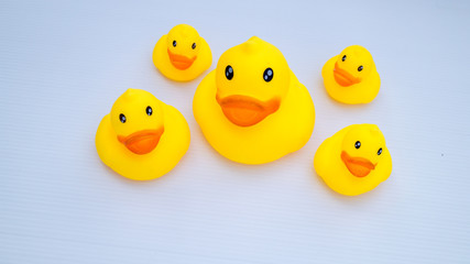 duck toys in white background