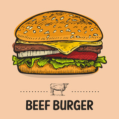 Hand Drawn Beef Burger, vector