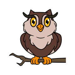 Cartoon Owl Vector Illustration