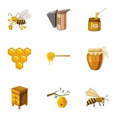 Honey icons set. Cartoon illustration of 9 honey vector icons for web