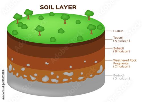 Earth structure soil layers and aquifer vector stock for Earth soil layers