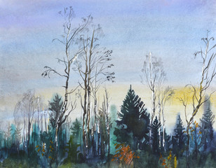 Landscape with forest.Postcard with trees and evening sky.Watercolor hand drawn illustration.