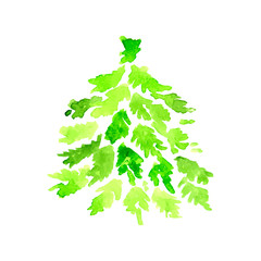 Spruce Tree, hand drawing in watercolor technique, vector