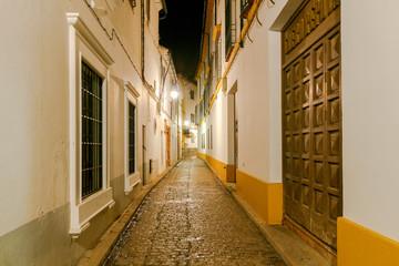 Cordoba. Old street at night.
