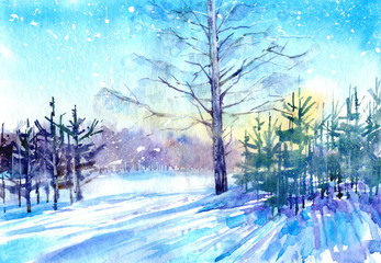 Winter landscape.Snowy spruce forest with sun light.Watercolor hand drawn illustration.