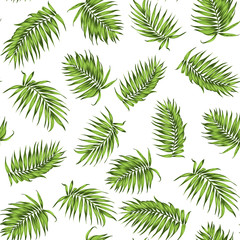 Tropical exotic palm tree branch leaves. Loose seamless jungle forest greenery pattern on white background. Vector design illustration for textile, fabric, wrapping, decoration.