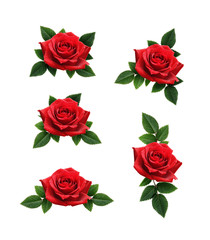 Set of red rose flowers decorations
