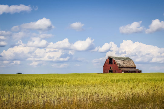 old abandoned red barn sitting in a field of green grass under a blue sky filled with white clouds