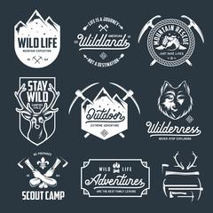 Set of outdoor wild life related labels badges emblems. Vector vintage illustration.