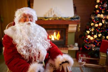 Portrait of happy Santa Claus.