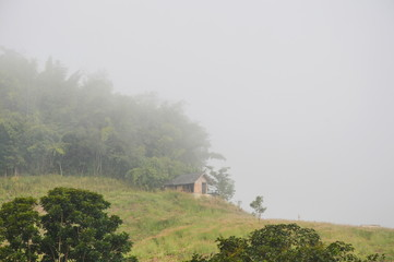 bamboo hut on hill cover by mist in the morning