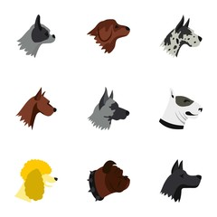 Pet dog icons set. Flat illustration of 9 pet dog vector icons for web