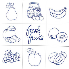 Doodle set of fruits - tangerine, banana, strawberry, plums, pear, grapes, apple, basket, hand-drawn. Vector sketch illustration isolated over white background.