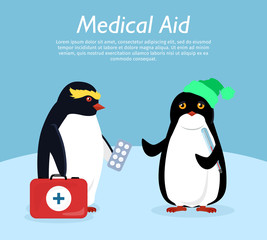Penguin Gives Quick Medical Aid to his Friend