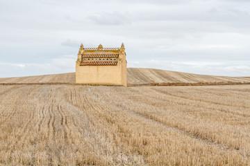 Palomar y campos de cereal cosechados.