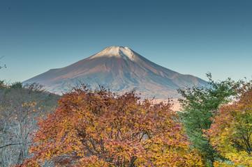 忍野からの富士秋景色
