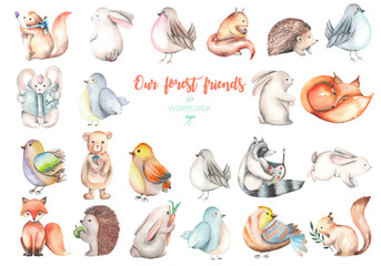 Collection, set of watercolor cute forest animals illustrations, hand drawn isolated on a white background