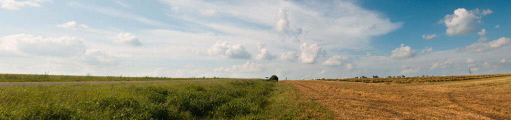 Fototapete - Rural landscape. Panorama of the field after harvest. Summer and autumn in one image, border design panoramic banner