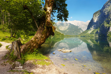 View of the lake of Obersee, Berchtesgaden National Park, Germany