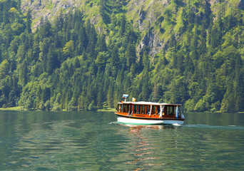 View of the sheep on the lake of Königsee, Berchtesgaden National Park, Germany
