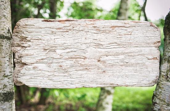 Mock up blank wooden board