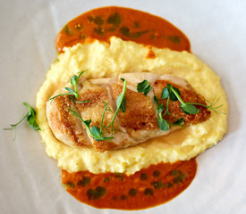 Chicken breast with mashed potatoes and sauce