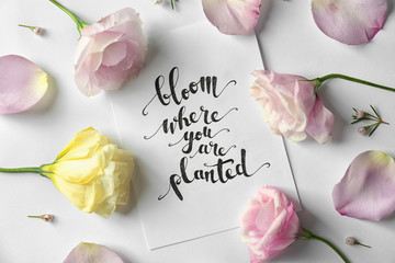 "Quote ""Bloom where you are planted"" written on paper with petals and flowers. Top view"