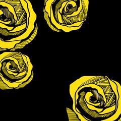flower, rose, spring, summer, background, botanical, garden