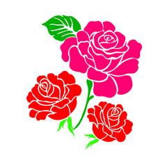 floral flower rose spring summer background botanical
