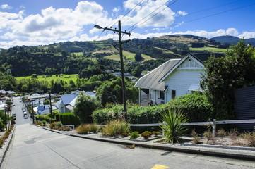 Baldwin Street, the world's steepest residential street, Dunedin, Otago, South Island, New Zealand, Pacific