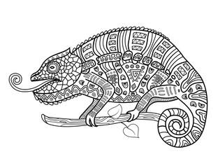 Coloring anti stress for adults. Chameleon.