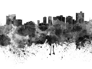 Wall Mural - Fort Worth skyline in black watercolor