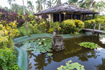 Tropical paradise . Fiji Islands.