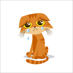 Sad Crying Cat. Cartoon Vector Illustration. Crying Cat Meme. Cat Face Picture. Crying Cat Emoticon. Cat Baby Tears. Cat Wants To Come In. The Poor Cat. Weeping Homeless Cat.
