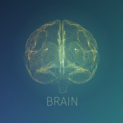 Abstract brain vector illustration. Xray view inside head. Neurology banner