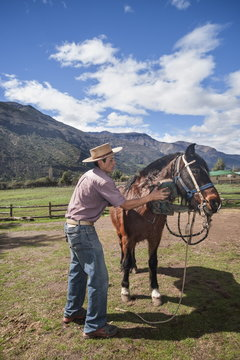 Chilean cowboy (arriero) brushes a horse on a ranch in El Toyo region of Cajon del Maipo, Chile