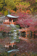 Japanese temple garden in autumn, Daigoji Temple, Kyoto, Japan, Asia