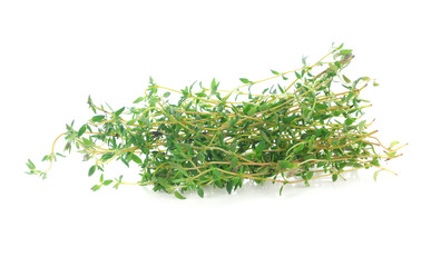 Thyme herb isolated on white background