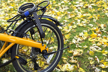 Orange folding bike in the forest an autumn day