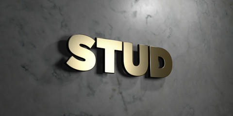 Stud - Gold sign mounted on glossy marble wall  - 3D rendered royalty free stock illustration. This image can be used for an online website banner ad or a print postcard.